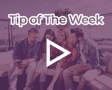 tip of the weak purple 2